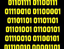 programmierer binärcode